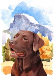 Sierra Valley Labs Logo California Labrador Retriever Breeder