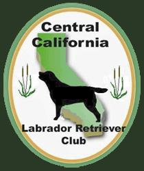 cclrc_logo-1